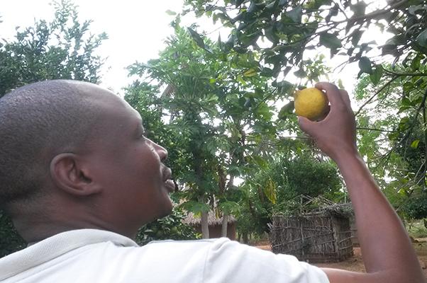 Lucas Tivana forskare vid University Eduardo Mondlane, Maputo är ansvarig för fältarbetet i Moçambique.