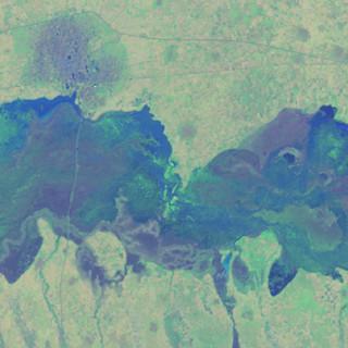 Satellitbild över ett område inom den halvtorra Sahelregionen i Afrika. Bild från Hakim Abdi som bygger på fjärranalysdata från Landsat 8 satelliten (US Geological Survey och NASA).