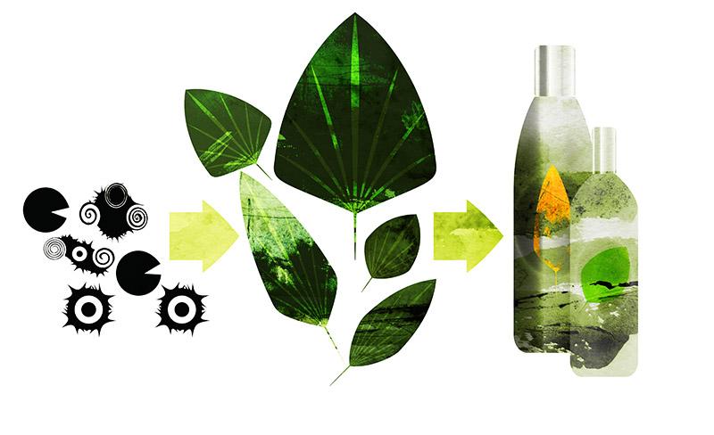 Bakterier omvandlar växtmaterial till kemikalier som används för att tillverka din schampoflaska.