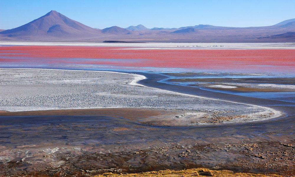 Laguna Colorada ligger på 4 278 meters höjd i Bolivia. Sjöns röda färg kommer av bakterier som innehåller röda pigment.