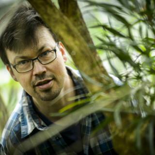 Lars Pettersson studerar fjärilar