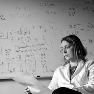 Sofie Elmroth, professor i oorganisk kemi