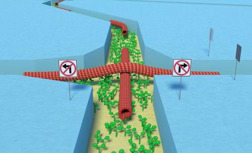 """""""Man bygger en labyrint av nanobaserade kanaler som har särskilda trafikregler för proteintrådar""""."""